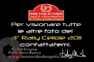 cellole20110605090000_ld_angelo_05_20110615_1276106831